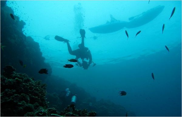 divingsign